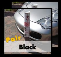 DS_pair_black